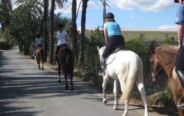 Clases para montar a caballo o paseo