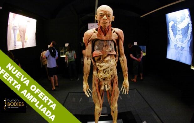 Human Bodies: más allá de la piel.