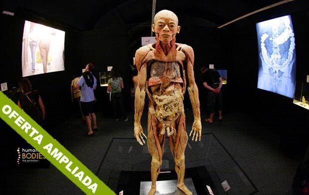 Human Bodies: la exposición de tu vida