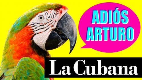 La Cubana vuelve a Murcia con su nuevo espectáculo: ¡adiós Arturo!