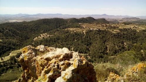 Ruta de senderismo Cuevas del Buitre