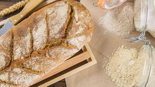 Taller: Elaboración de pan con agua de mar Winbi
