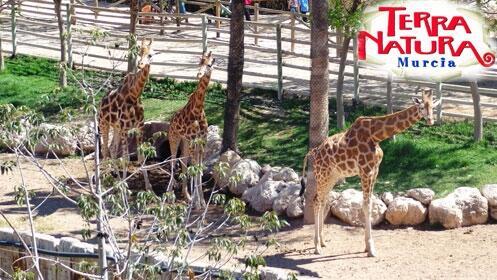 1 día: Terra Natura Murcia